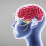 頭の中の神経に電流を流し、偏頭痛を軽減させるデバイス「Cefaly」
